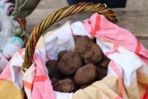 panier de truffes noires