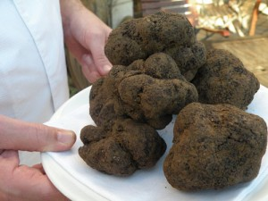 pourquoi pas des truffes